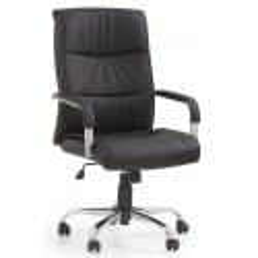 Vadovo kėdė 0671EJH