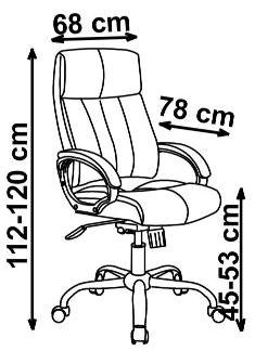 vadovo kėdės matmenys