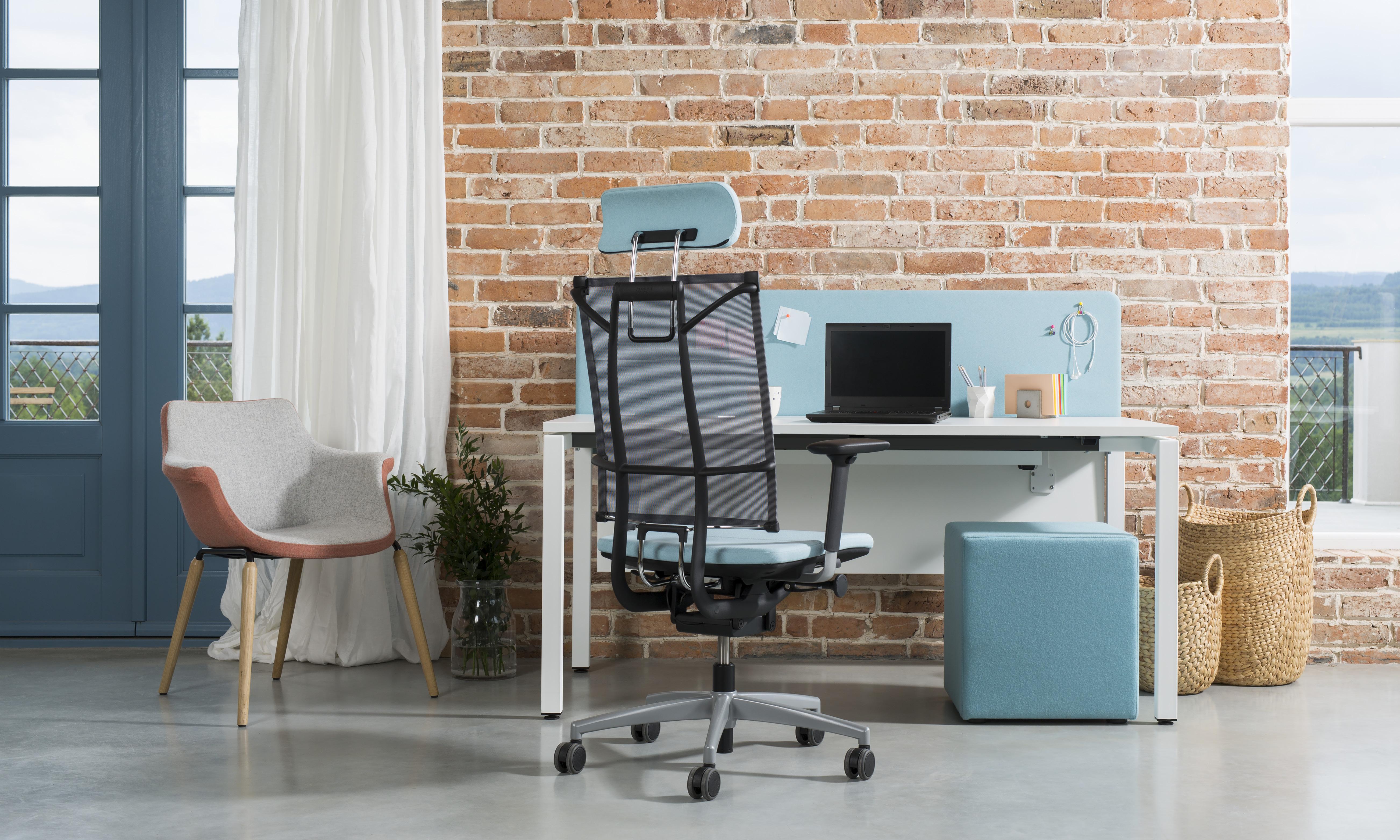 ergonominė kėdė sail